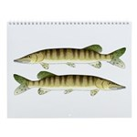 Muskellunge Great Lakes Fishes Wall Calendar