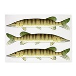 Muskellunge 5'x7'Area Rug