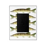 Muskellunge Picture Frame