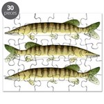 Muskellunge Puzzle