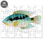 Flag (Festivus) cichlid Puzzle
