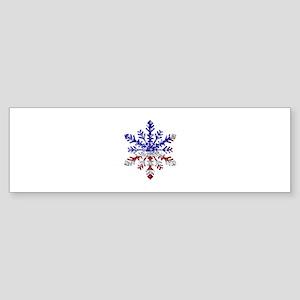 USA Snowflake Bumper Sticker
