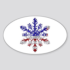 USA Snowflake Oval Sticker