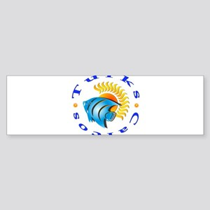 tnc sunfish Bumper Sticker