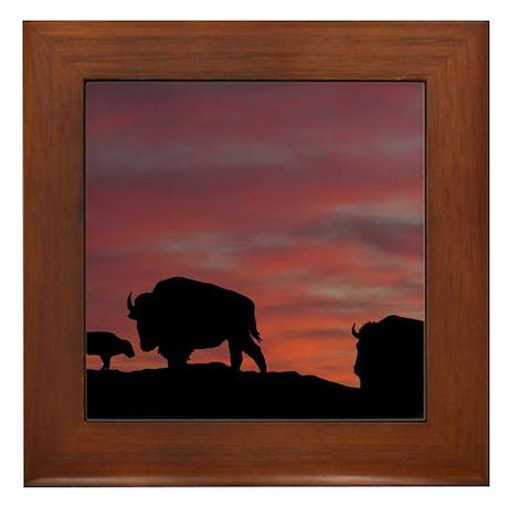 Bison Family Framed Tile
