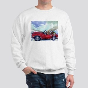 Airedale terrrier Sweatshirt