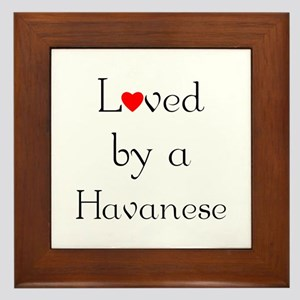 Loved by a Havanese Framed Tile