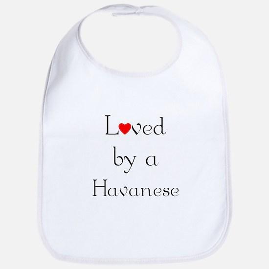 Loved by a Havanese Bib