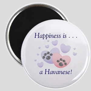 Happiness is...a Havanese Magnet