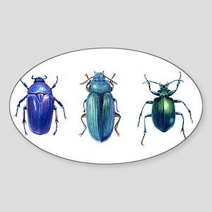 Iridescent Beetles Oval Sticker