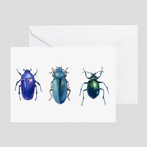 Iridescent Beetles Greeting Card