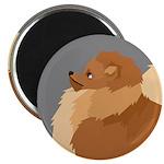 Pomeranian Magnets