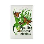 Pacific Grove Monarchs Rectangle Magnet