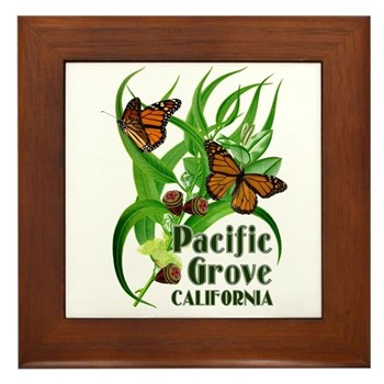 Pacific Grove Monarchs Framed Tile