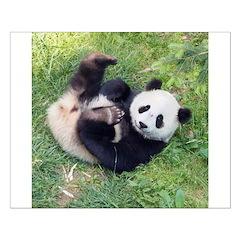 Giant Panda Posters