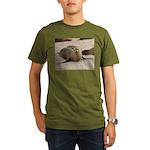 Galapagos Islands Sea Lion Organic Men's T-Shirt (
