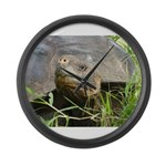 Galapagos Islands Turtle Large Wall Clock