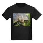 Galapagos Islands Turtle Kids Dark T-Shirt