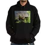 Galapagos Islands Turtle Hoodie (dark)