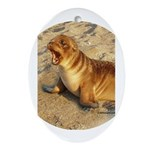 Baby Sea Lion Oval Ornament