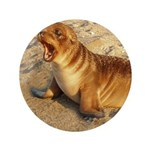 """Baby Sea Lion 3.5"""" Button (100 pack)"""