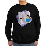Rainbow Archer Sweatshirt (dark)