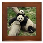 Mom & Baby Giant Pandas Framed Tile