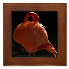 Flamingo Beauty Framed Tile