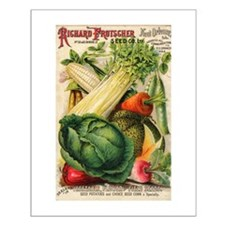Richard Frotscher Seed Co. Small Poster