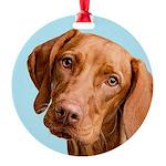 Vizsla Portrait Ornament