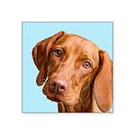 Vizsla Portrait Sticker