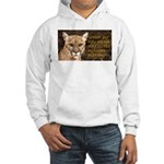 You Voted Against Ron Paul? Hooded Sweatshirt