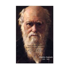 Evolution Charles Darwin: Useful Variations