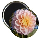"Pink Flower 2.25"" Magnet (10 pack)"