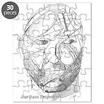 Joe's Head Puzzle