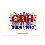 CDH Superhero Stars Logo for Boys Sticker (Rectang