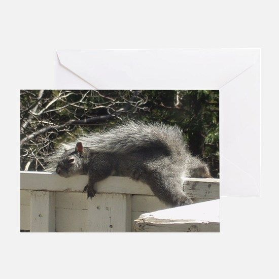 Bum Squirrel Greeting Card