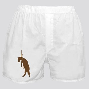 Hung like a horse Boxer Shorts