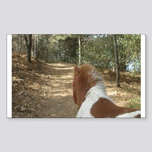Mini Trail Rectangle Sticker