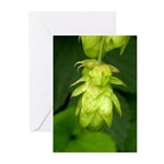 Green Hop Greeting Cards (Pk of 10)