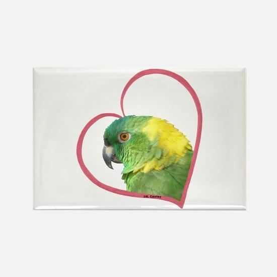YN Amazon Heart Line Rectangle Magnet