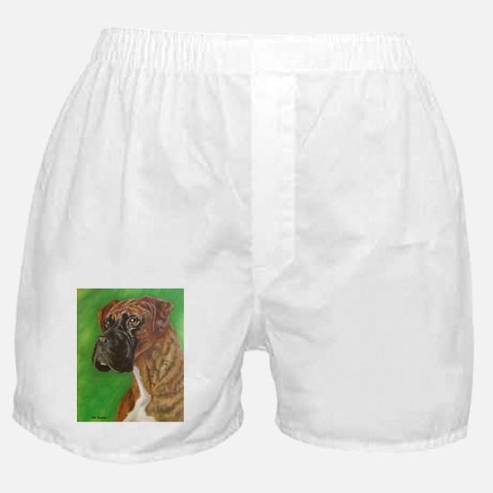 N Brdl Boxer Boxer Shorts