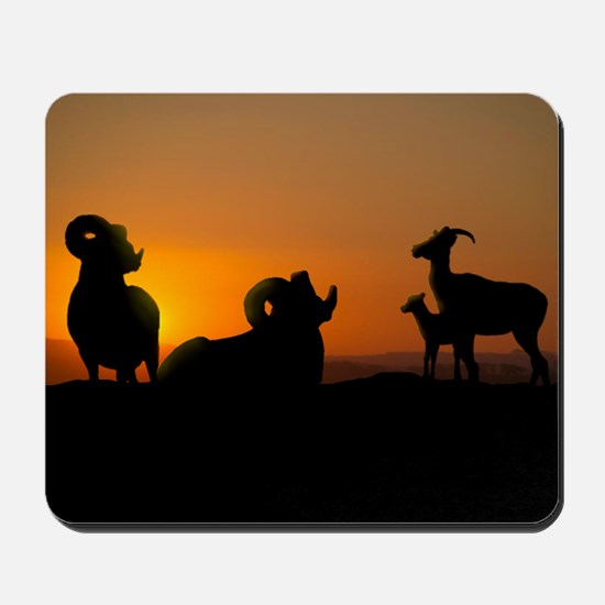 Bighorn Sheep Mousepad