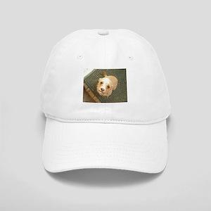 Stray Mutt Cap