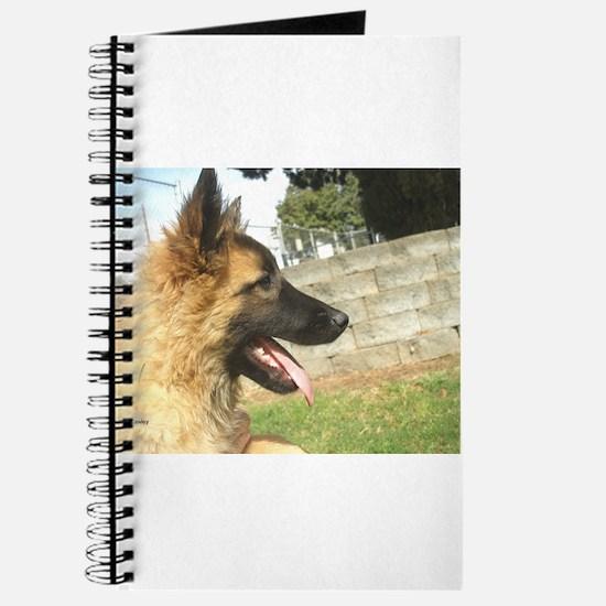 BT Pupside Journal