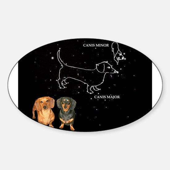 Canis Major Oval Decal