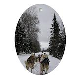 Dog sledding Oval Ornaments