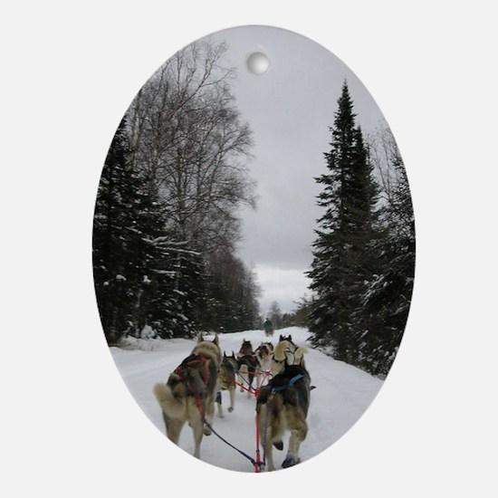 Dog Sled Teams Oval Ornament
