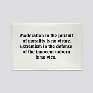 Moderation/Extremism Rectangle Magnet