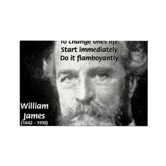 William James Life and Change Rectangle Magnet
